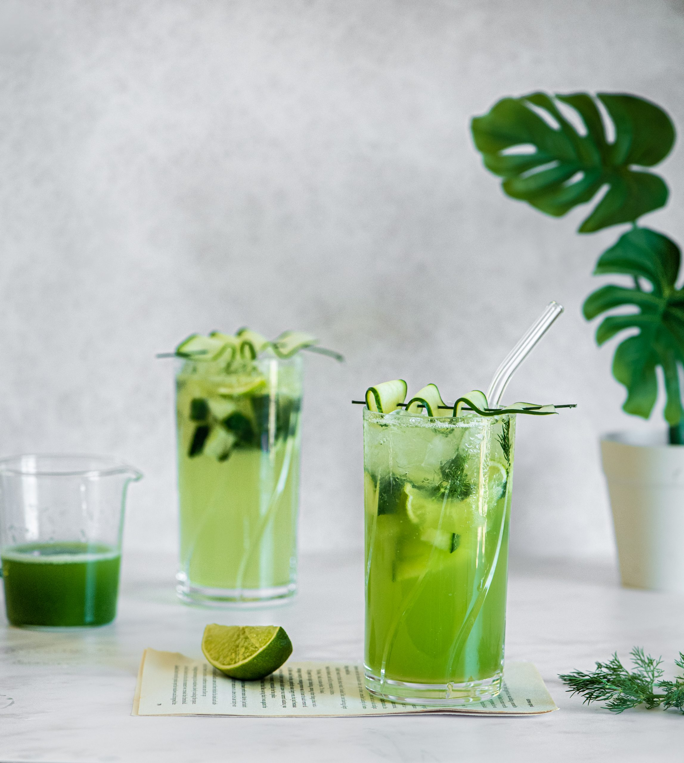 2 glasses of cucumber and dill gin cocktails with a cucumber twist